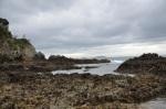 Waiheke Coastal Hike