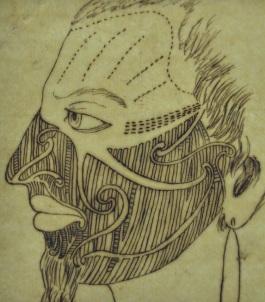 Mauri Face 3