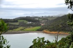 Waiheke Coasal Hike