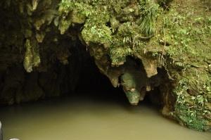 Waitomo Cave exit
