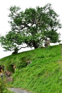 Hilltop Tree (fake)