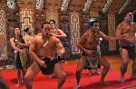 Waitangi Cultural Show