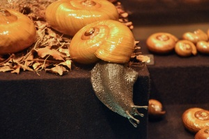 Carniverous land snail
