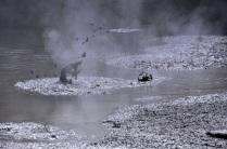 Mud Pool Blobs