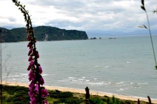 Abel Tasman, beach