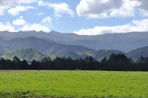 Hawke's Bay Mountains