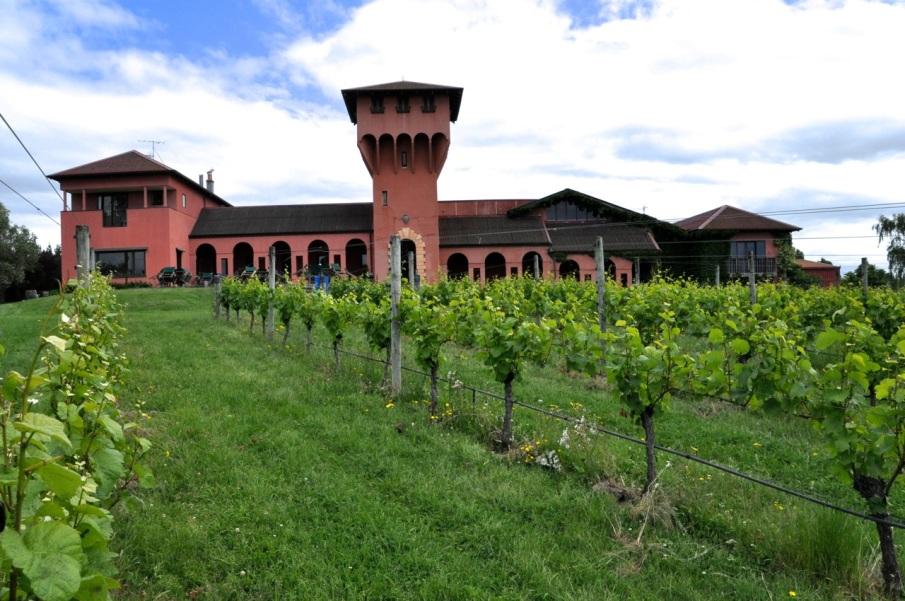 Highfield wines