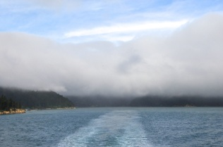 Marlborough Sound 9