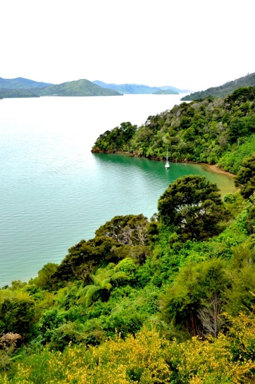 Queen Charlotte Drive 1