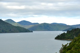 Queen Charlotte Drive 3