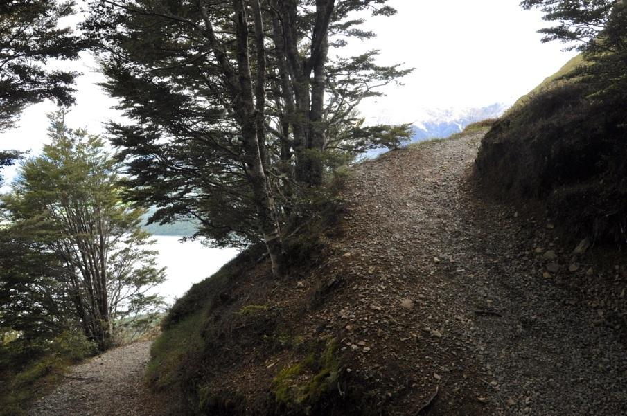 Steep Trail!