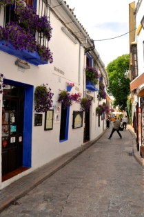 Barrio street; white walls and flower pots