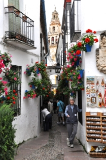 Calleja de las Flores (street of the flowers), with Cathedral in background