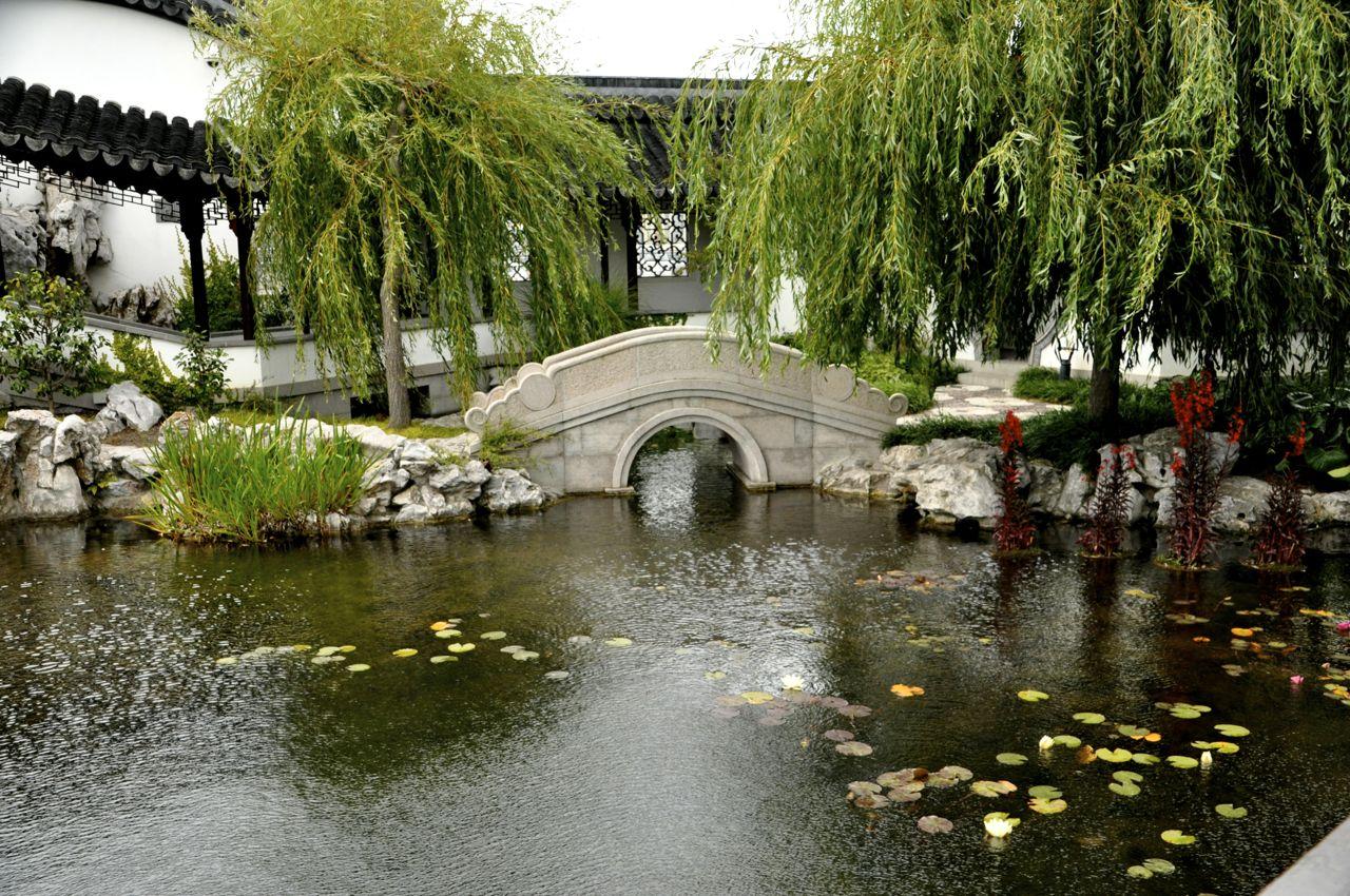 Dunedin Chinese Scholar Garden and Polynesia trekin time