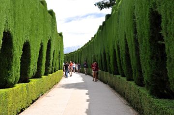 Path to the Generalife