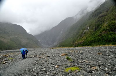 The walk in to Franz Josef