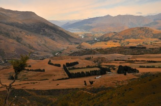 Queenstown in the distance