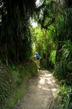 Abel Tasman Coastal Trail
