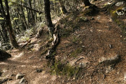 A switchback in the steep trail