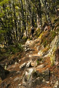 John, climbing ahead on the rocky trail