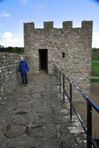 Ginger patroling the fort wall (replica)