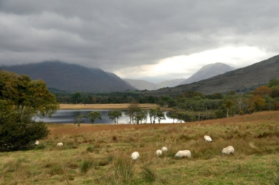The Highland country scene