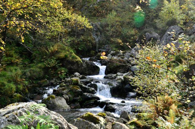 Pretty stream
