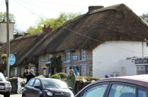 Thatched roof houses