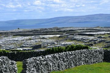 """The Aran """"gap"""" style fence with upright stones"""