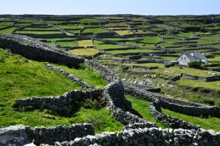 The stone walls and small plots of Inisheer