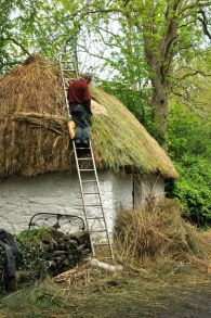 Repairing a thatched roof