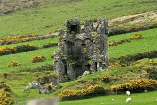 Interior of ruined tower house