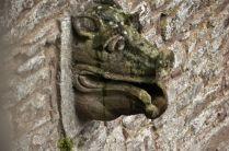 Details of a gargoyle