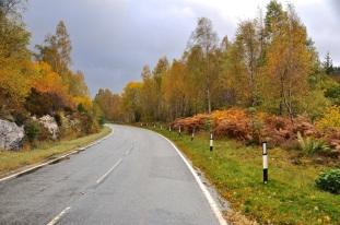 Even the roads are pretty