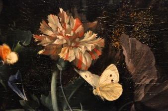 Detail of Ruysch's Flowers and Butterflies by a Tree Trunk