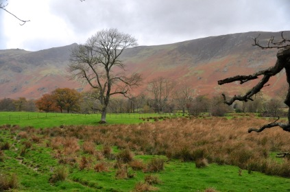 Pretty scenery near Borrowdale