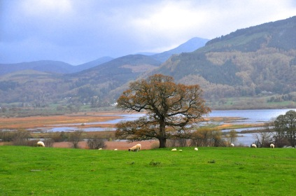 Pastoral splendor, the Lake District