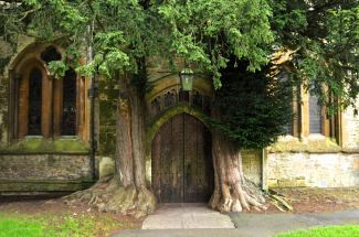 North entrance to St. Edward's church