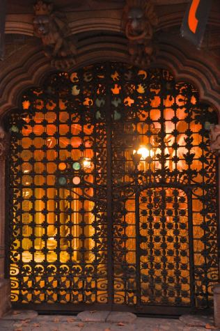 The beautiful wrought iron door