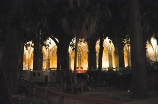 Barcelona Cathedral's cloister courtyard
