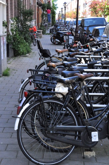 Bikes lined up, as far as the eye can see
